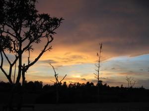 シアム・リアップ近郊の夕焼 (1)
